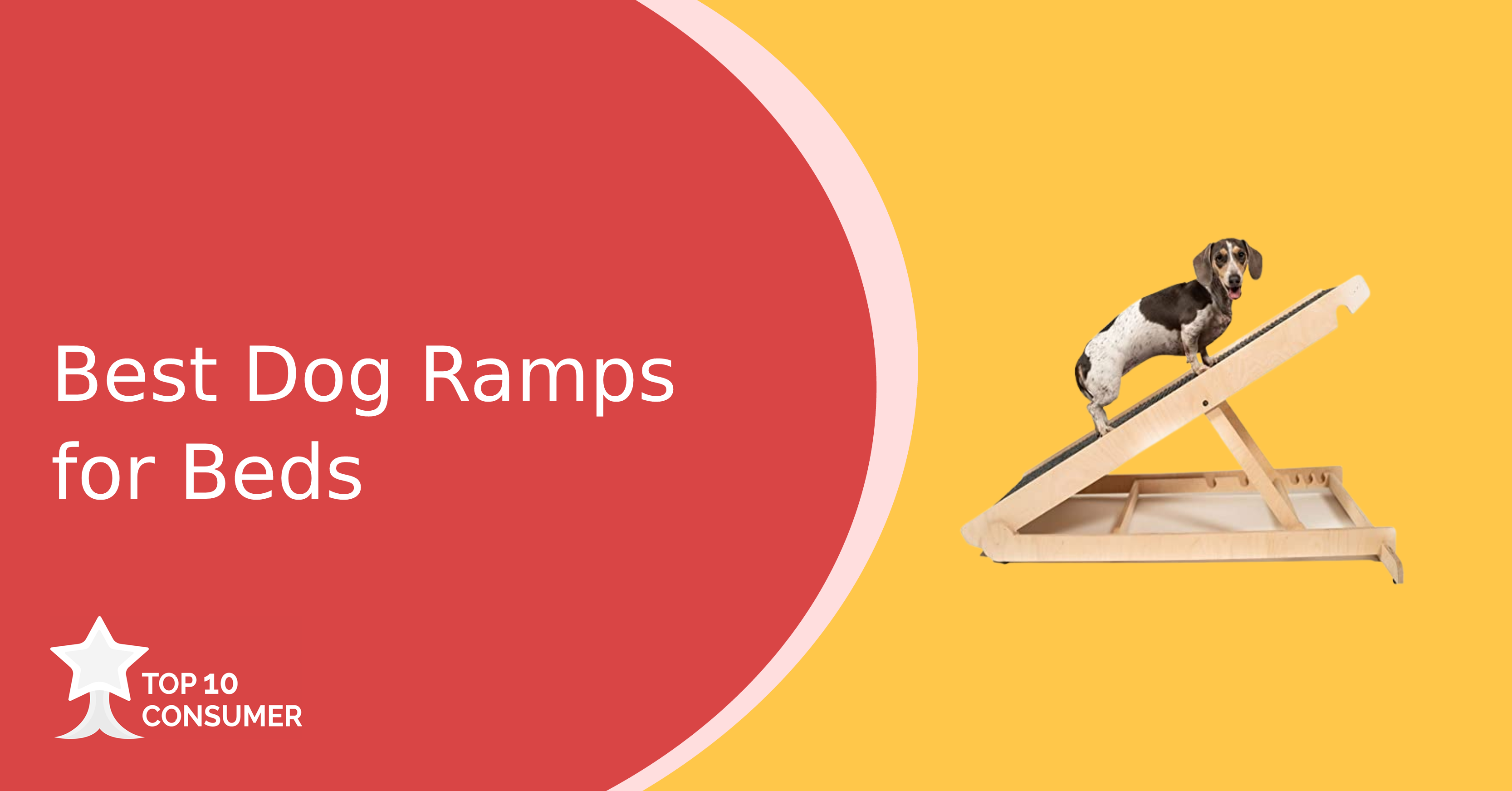 Best Dog Ramps For Beds