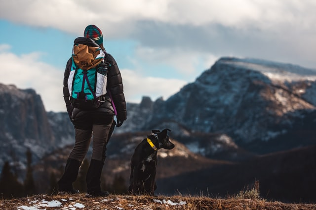 Factors That Impact How Far A Dog Can Hike