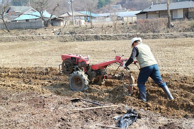 Differences Between a Garden Tiller and a Cultivator