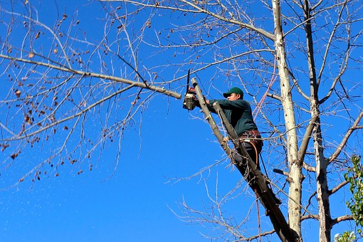 Are Battery Powered Chainsaws Safer?