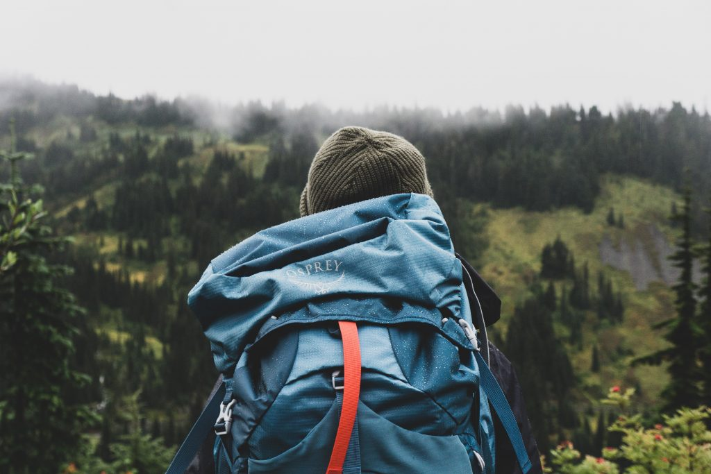 A person with a blue backpack overlooking a forest.