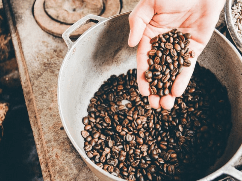 Pot of coffee beans with a hand holding some coffee beans